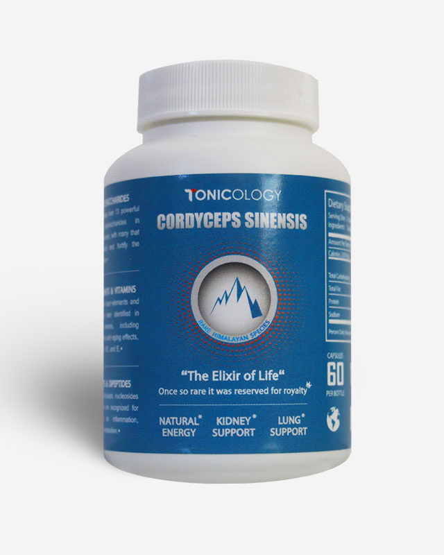 https://www.tonicology.com/wp-content/uploads/tonicology-branded-cordyceps-capsules.jpg